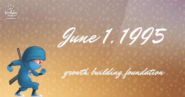 June 1, 1995 Birthday Ninja