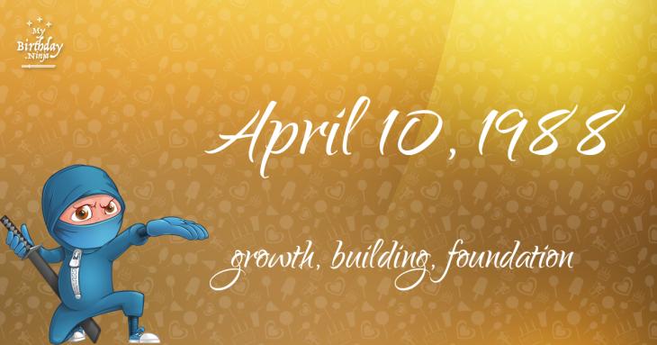 April 10, 1988 Birthday Ninja