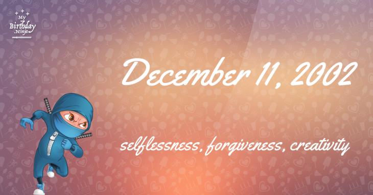December 11, 2002 Birthday Ninja