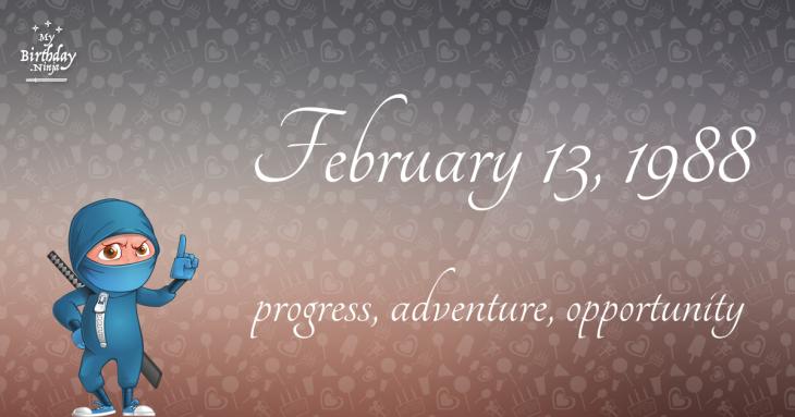 February 13, 1988 Birthday Ninja