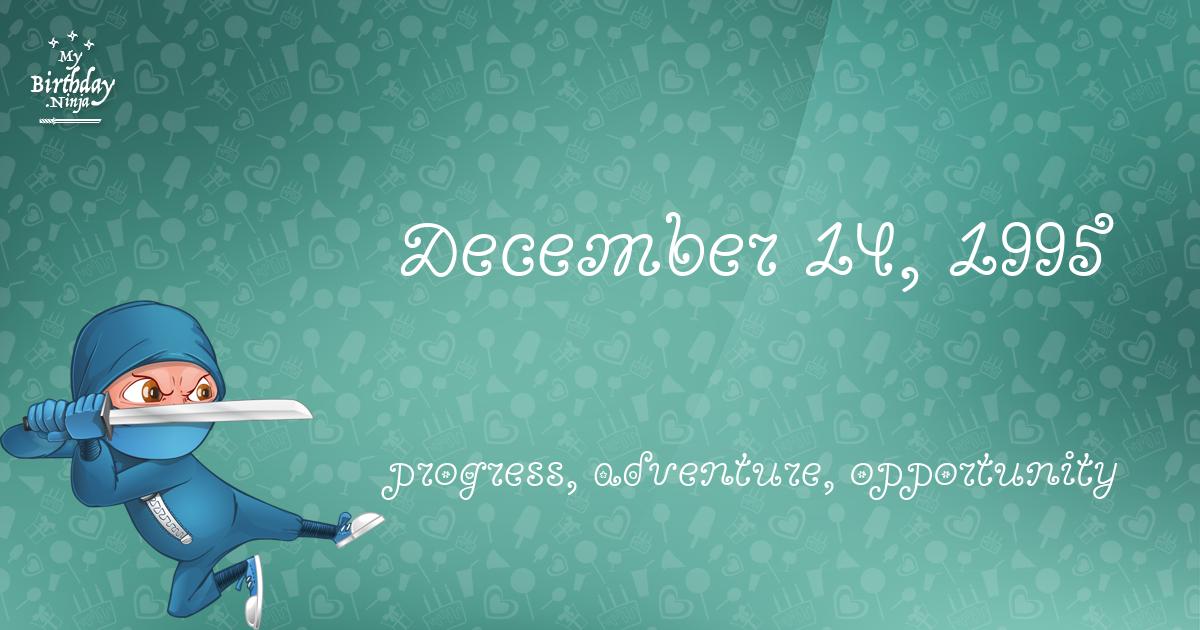 December 14, 1995 Birthday Ninja Poster