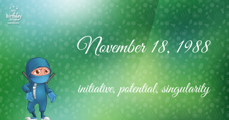 November 18, 1988 Birthday Ninja