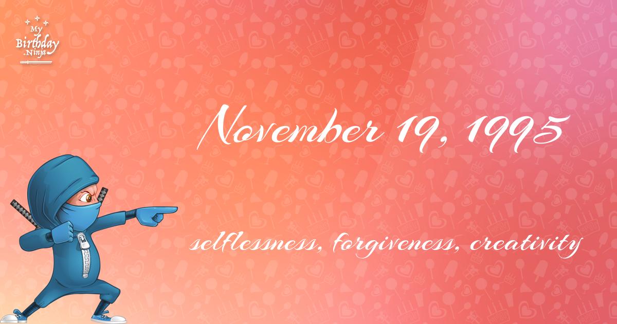 November 19, 1995 Birthday Ninja Poster