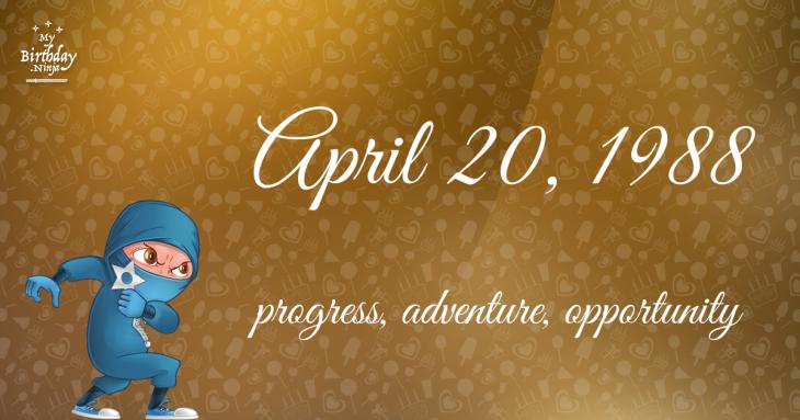 April 20, 1988 Birthday Ninja