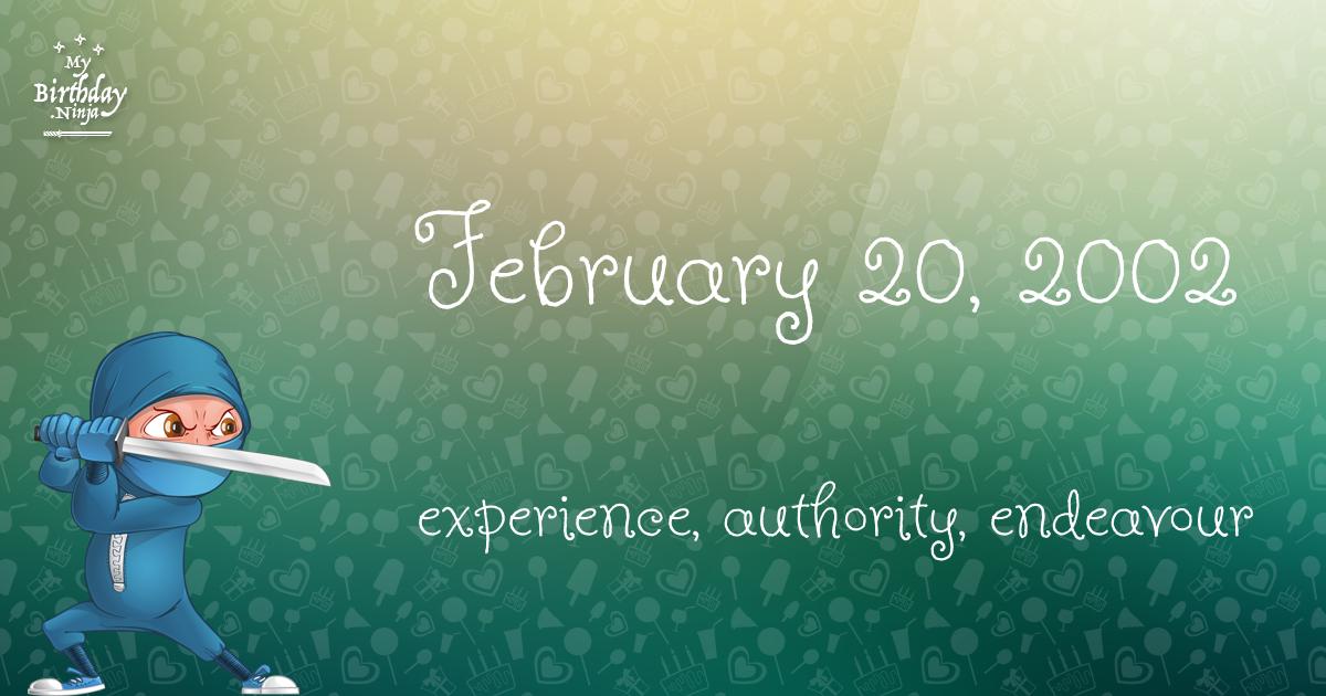 February 20, 2002 Birthday Ninja Poster
