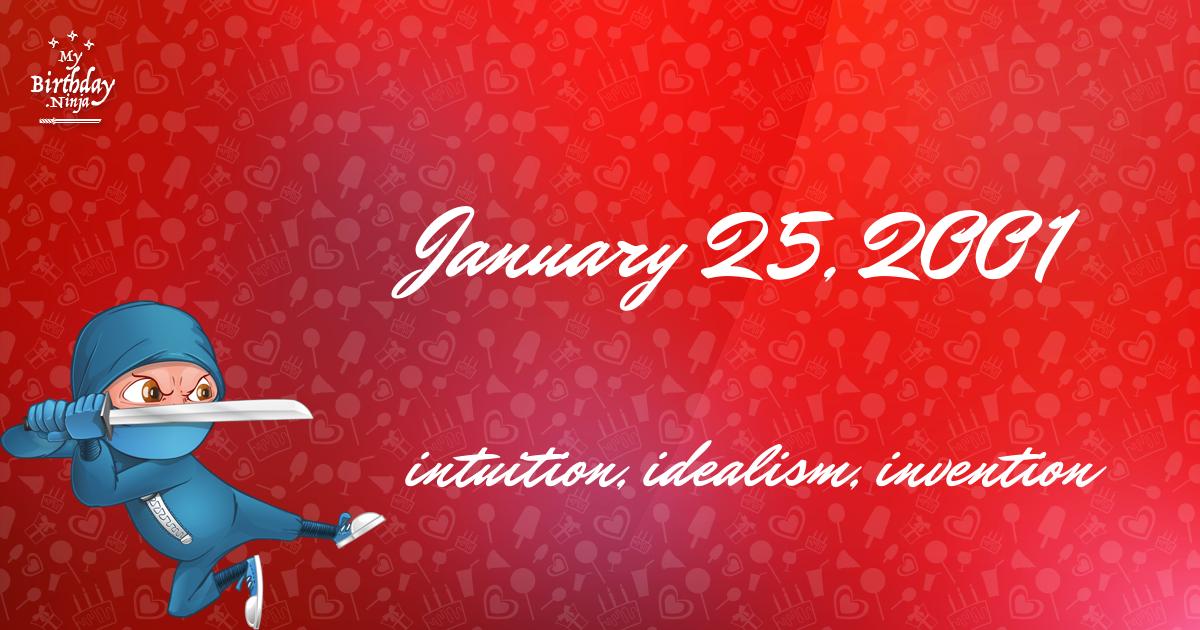 January 25, 2001 Birthday Ninja Poster