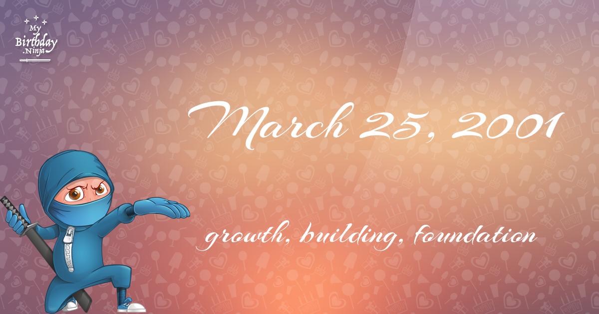 March 25, 2001 Birthday Ninja Poster