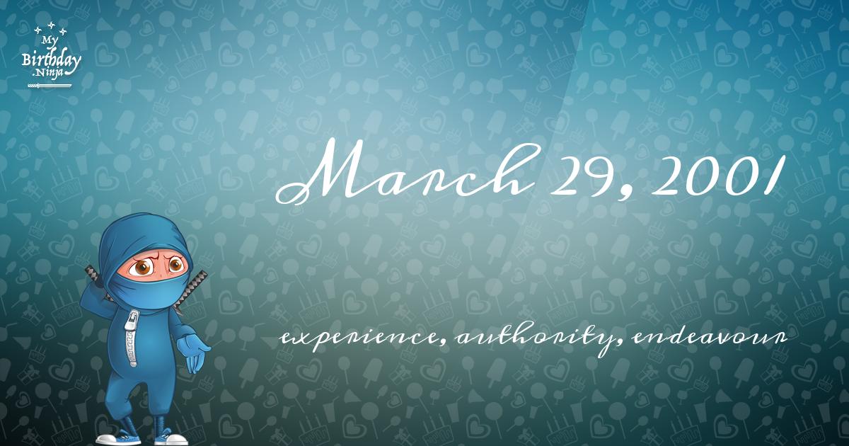 March 29, 2001 Birthday Ninja Poster