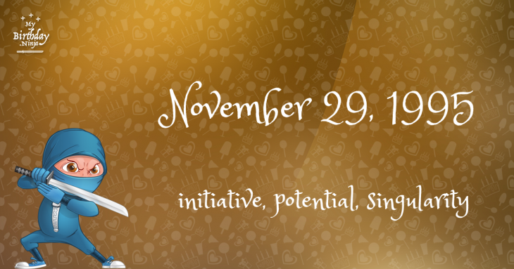 November 29, 1995 Birthday Ninja