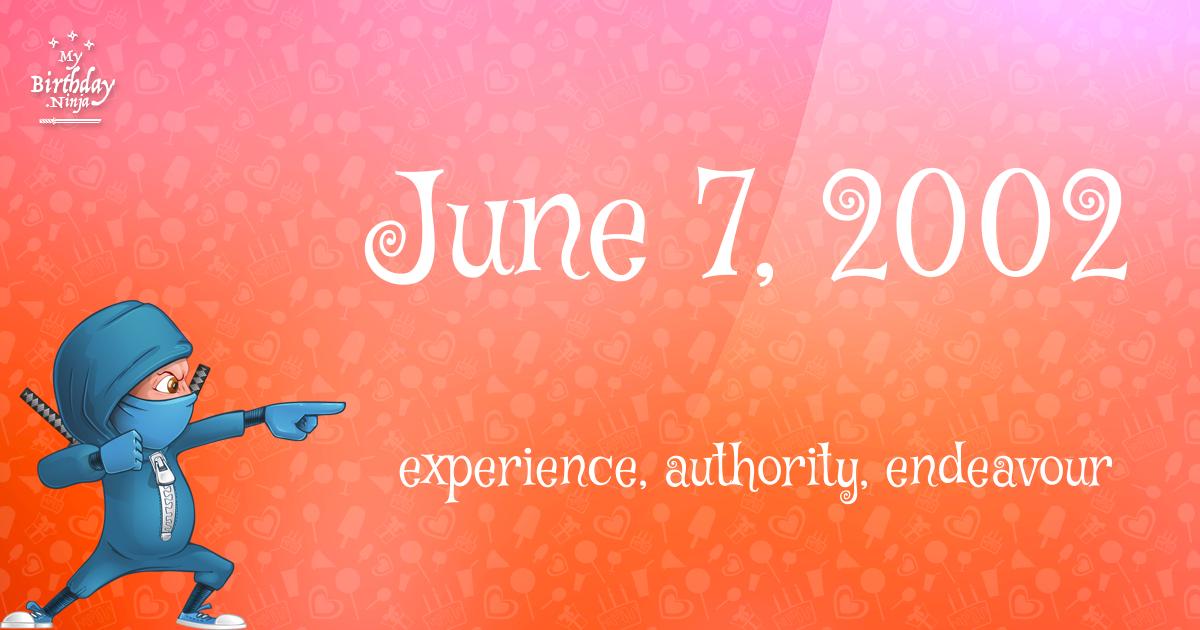 June 7, 2002 Birthday Ninja Poster