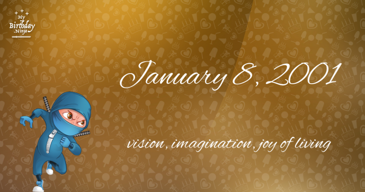 January 8, 2001 Birthday Ninja