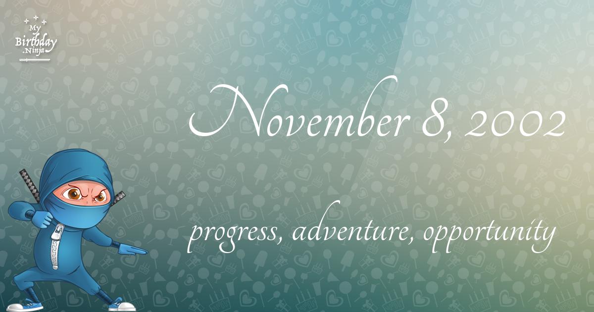 November 8, 2002 Birthday Ninja Poster