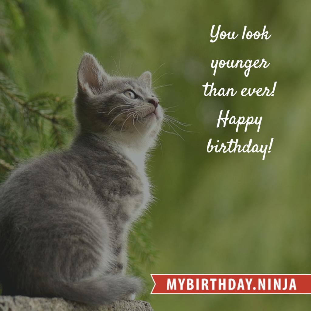 Birthday Wish (t93r4htz52qnfrp8)